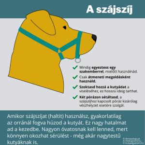 Amikor szájszíjat (haltit) használsz, gyakorlatilag az orránál fogva húzod a kutyát. Ez nagy hatalmat ad a kezedbe. Nagyon óvatosnak kell lenned, mert könnyen okozhat sérülést - még akár nagytestű kutyáknak is.